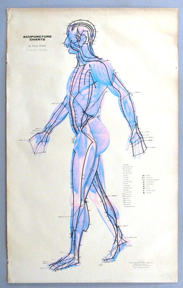 North American Set of Three Vintage Acupuncture Serigraphs on Linen by Felix Mann For Sale
