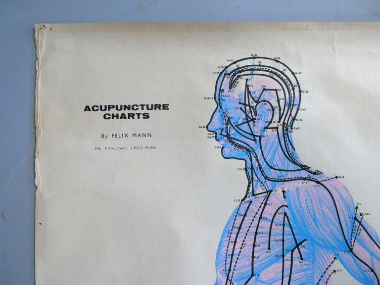 Set of Three Vintage Acupuncture Serigraphs on Linen by Felix Mann For Sale 3