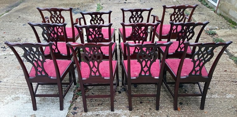 Set of Twelve Antique Chippendale Dining Chairs by Edwards and Roberts In Good Condition For Sale In Gloucestershire, GB