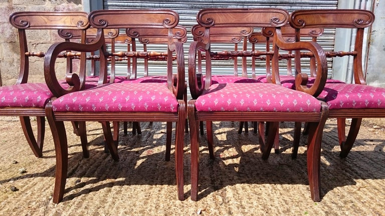 Set of Twelve Early 19th Century Regency Mahogany Antique Dining Chairs For Sale 1