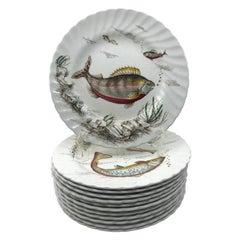 Set of Twelve English Fish Plates
