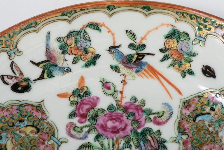 Set of Twelve Famille Vert Porcelain Plates, China circa 1900 For Sale 8