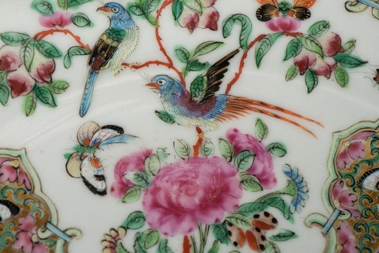 Set of Twelve Famille Vert Porcelain Plates, China circa 1900 For Sale 12