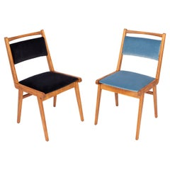 Set of Two 20th Century Black and Blue Velvet Chairs, Poland, 1960s