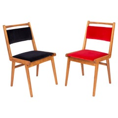 Set of Two 20th Century Black and Red Velvet Chairs, Poland, 1960s