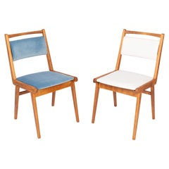 Set of Two 20th Century Blue and White Velvet Chairs, Poland, 1960s