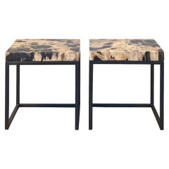 Set of Two End Tables with Petrified Wood Tabletops from Indonesia