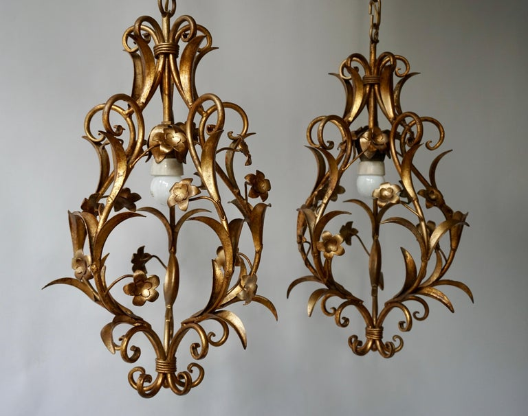 Two stylish Italian 1950s gilt-tole foliate chandeliers - ceiling lights with out-scrolled leaves.