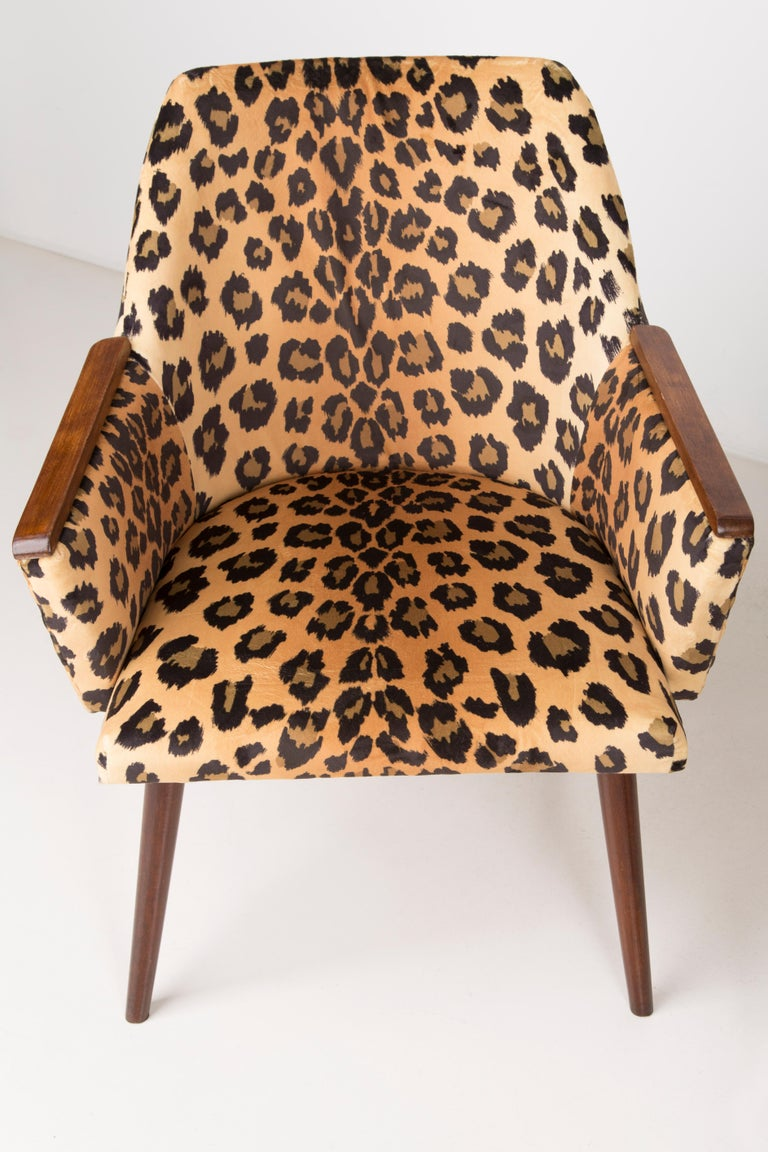 Set of Two Mid-Century Modern Leopard Print Chairs, 1960s, Germany For Sale 2