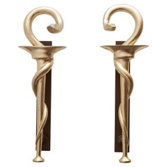 Set of Two Pharmacy Icon with Caduceus Symbol Door Handles for Apothecary, 1970s