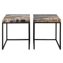 Set of Two Side Tables with Petrified Wood Tabletops from Indonesia