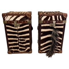 Set of Zebraskin Trunks