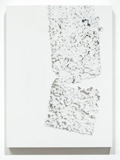 Fragmentation Installation Series No. 14