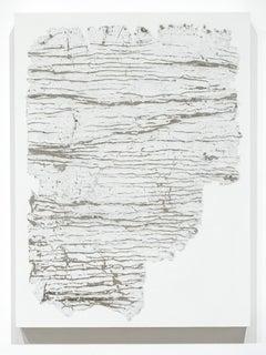 Fragmentation Installation Series No. 25