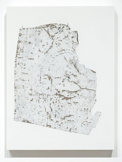 Fragmentation Installation Series No. 34