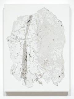 Fragmentation Installation Series No. 37