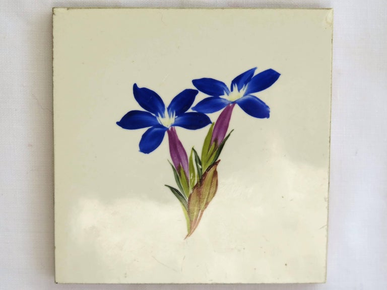Seven Floral Ceramic Wall Tiles European Hand-Painted, Early / Mid 20th Century For Sale 4