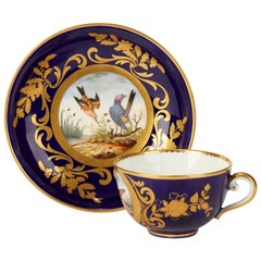 Sèvres French Porcelain Hand Painted Teacup and Saucer with Bird Scenes, 1791