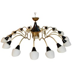 Sexy Large Chandelier Design by Stilnovo