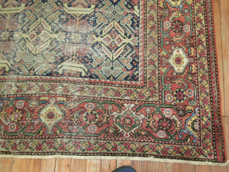 Shabby Chic Persian For Sale 1