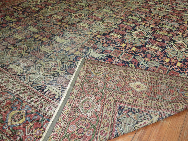 Shabby Chic Persian For Sale 2
