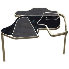 Shagreen Cocteau Coffee Table with Shell and Brass Accents by R & Y Augousti