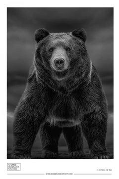 Shane Russeck Gallery Exhibition Poster- Bear Fine Art Photography Kodiak