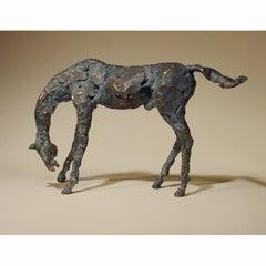 Rozinante Horse A/P
