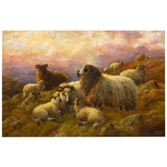 """""""Sheep at Rest in the Highlands"""" '1914' Antique Oil Painting by Robert Watson"""