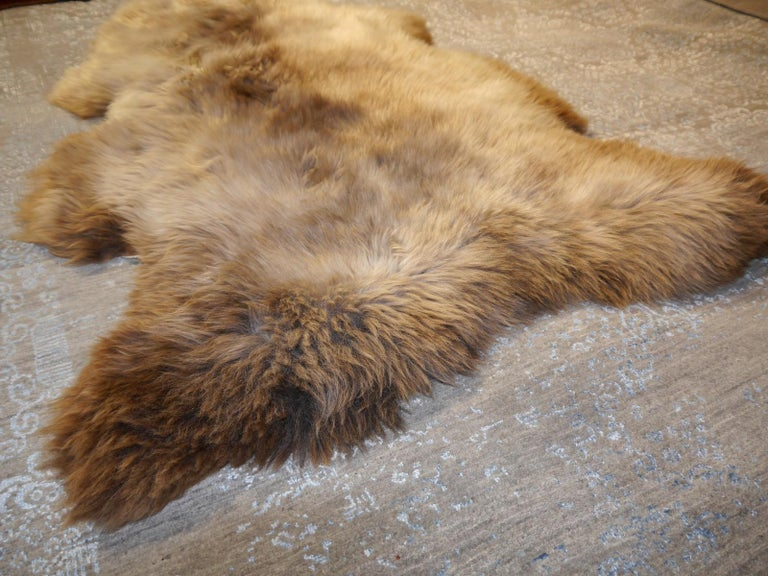 Sheep Skin Rug Bronze Brown Long Hair Grizzly  For Sale 5