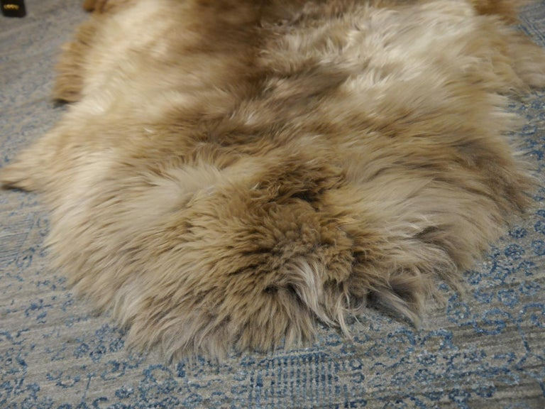 English Sheep Skin Rug Bronze Brown Long Hair Grizzly  For Sale