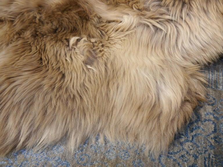 Sheepskin Sheep Skin Rug Bronze Brown Long Hair Grizzly  For Sale