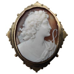 Shell Cameo in 14 K Gold Brooch/Pendant