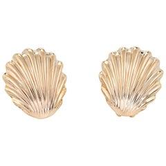 Shell Earrings 14 Karat Yellow Gold Omega Backings Estate Jewelry Ocean Sea