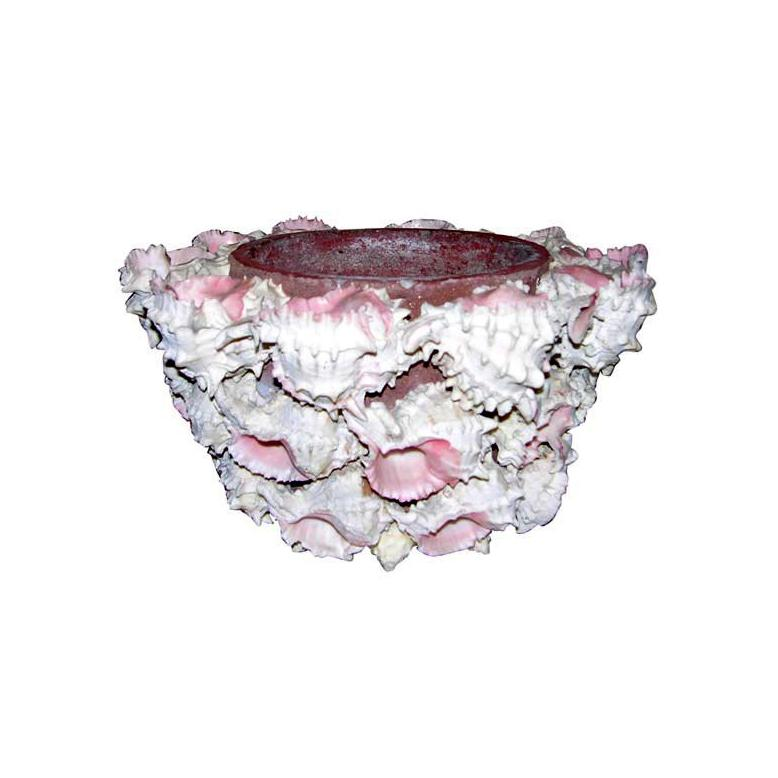 Shell Encrusted Flower Pot