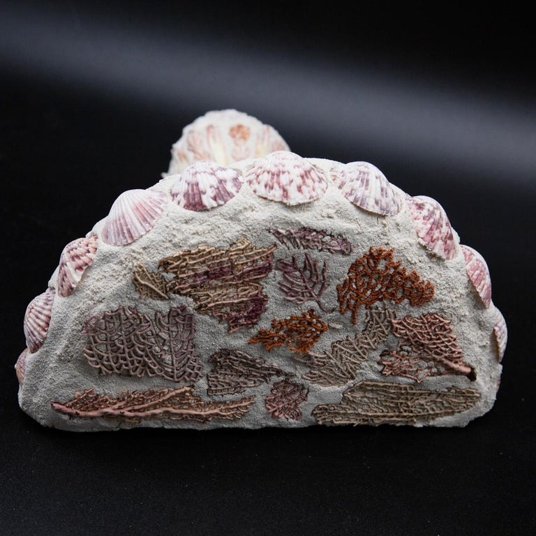 Coral Shell Mosaic Wall Bracket For Sale
