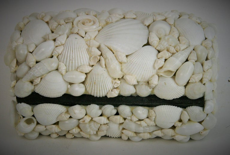 Shell Trinket Box For Sale 1