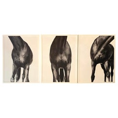 Shelli Breidenbach Horse Triptych