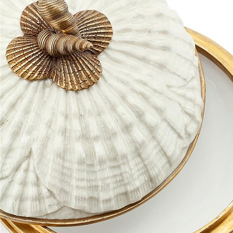 Contemporary Shells Box in White Porcelain For Sale