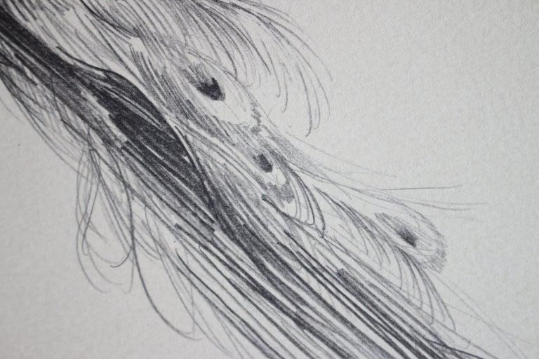 Beautiful Bird (Artist Proof) - Gray Animal Print by Shelly Fink