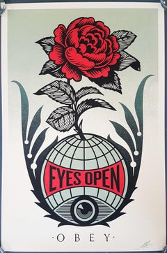 Eyes Open ($35 SHIPPING U.S. Only (not $499 as quoted by the system!)