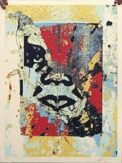 Shepard Fairey - Obey Giant - Enhanced Disintegration - Graffiti Street Art