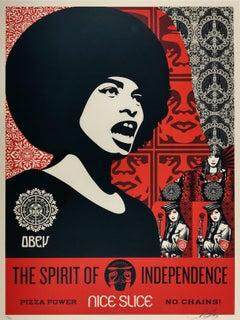 Spirit of Independence Obey - Shepard Fairey Activism Street Art Print