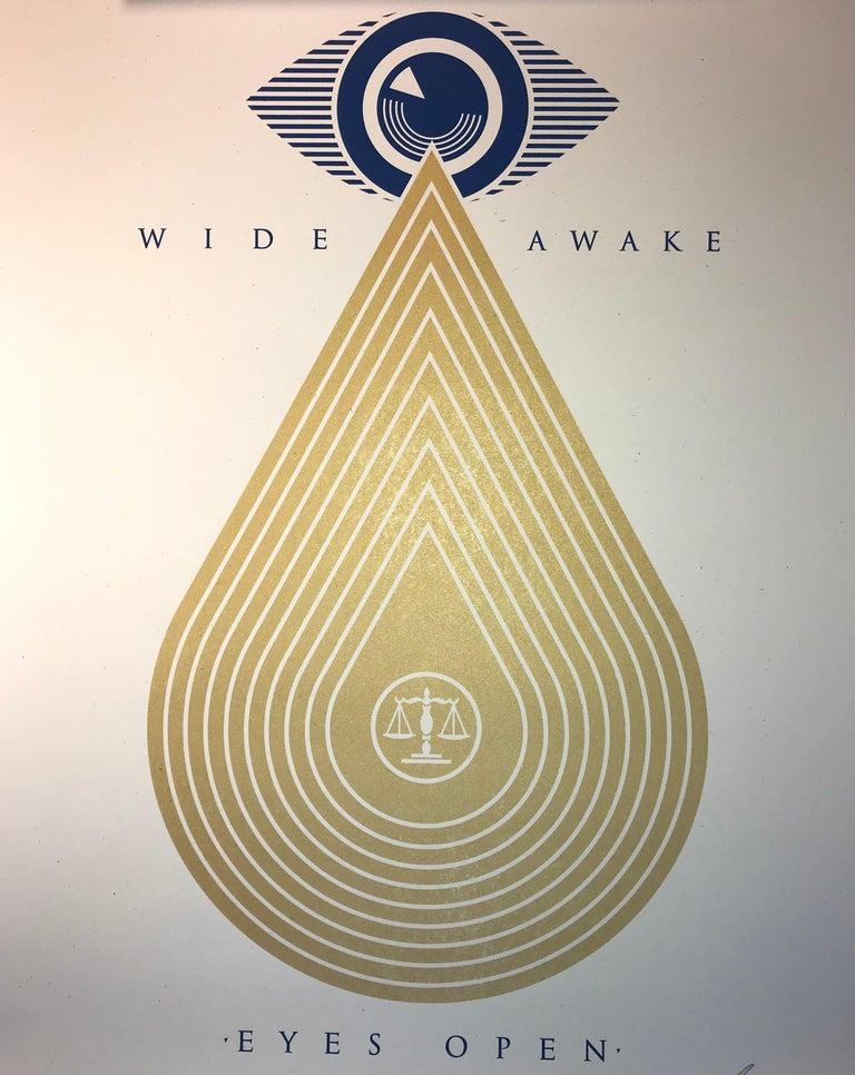 Wide Awakes Campaign 2020 Shepard Fairey Stay Woke Print Street Art Dump Trump For Sale 4