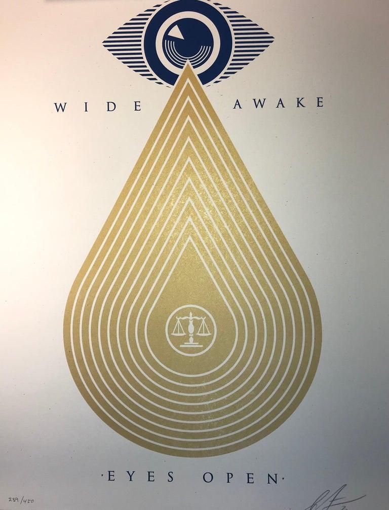 Wide Awakes Campaign 2020 Shepard Fairey Stay Woke Print Street Art Dump Trump For Sale 5