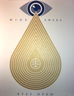 Wide Awakes Campaign 2020 Shepard Fairey Stay Woke Print Street Art Dump Trump