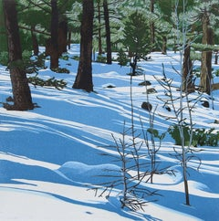 Shadowplay, 16/16 (pine forest, shadows, colors of snow)