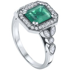 2.53 Carat Emerald & Diamond Ring in 14 Karat White Gold - Shlomit Rogel