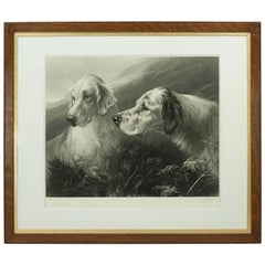 Shooting Dog Engraving, Setters at Work by Heywood Hardy