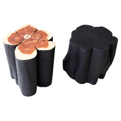 Shou Sugi Ban Burned Black Stumps